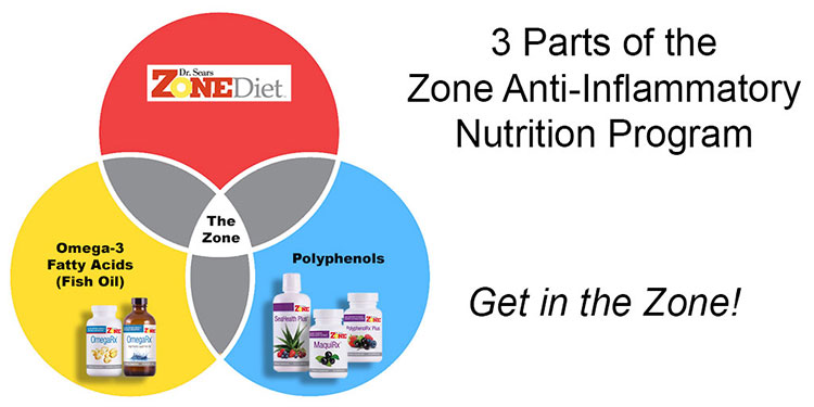Zone Anti-Inflammatory Nutrition Program Diagram