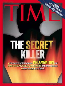 Time Magazine, February 2004, Inflammation